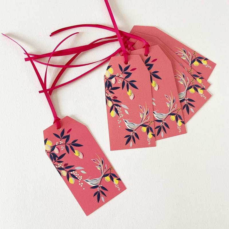 Geschenkanhänger-Pinker-Vogel-Set